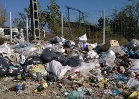 Misterul gunoiului din Râbâia, Petricani