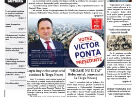Ziar Targu Neamt nr. 19, editie print