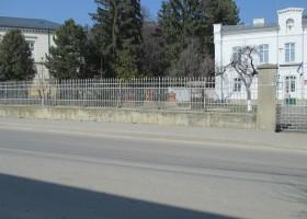 Plopii fără soț revin la Târgu Neamț