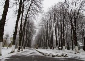 Poza Zilei: Iarna peste parcul de la poalele Cetății