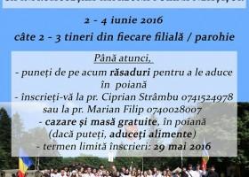 Vino alături de ATOR pentru a înfrumuseța Poiana Nemțișor!