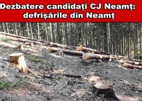 Dezbatere candidați CJ Neamț: defrișările din Neamț