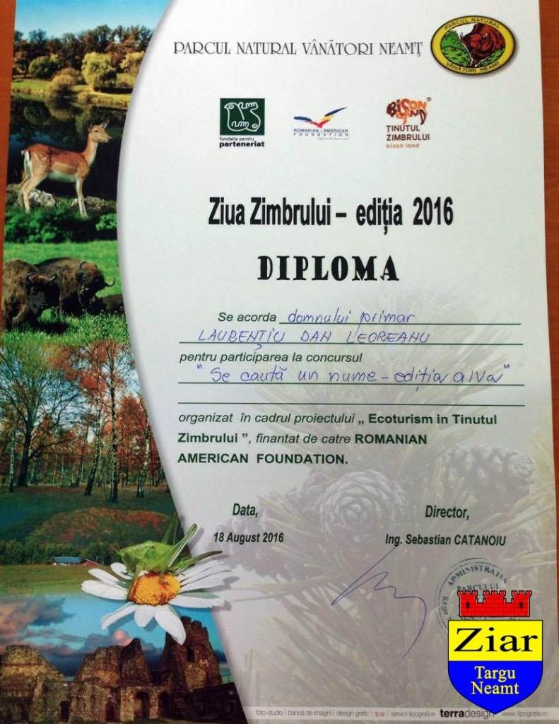 diploma leoreanu