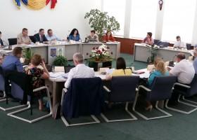 Bârsan intră în Consiliul Local al orașului Târgu Neamț