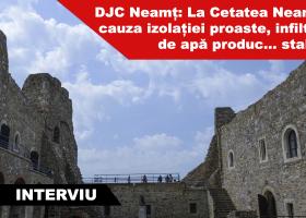 Direcția Județeană pentru Cultură Neamț reclamă starea proastă de conservare a Cetății Neamț