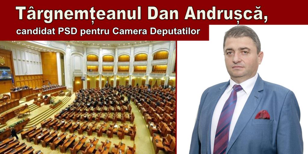 dan-andrusca-candidat-deputat-neamt