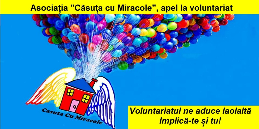 casuta cu miracole voluntariat