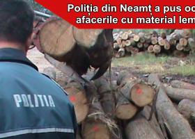Controale pe linie silvică, circa 1000 mc de lemn confiscat valoric
