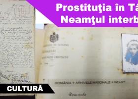Prostituţia în Târgu Neamţul interbelic