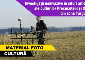 Investigații neinvazive în situri arheologice ale culturilor Precucuteni și Cucuteni din zona Târgu Neamț