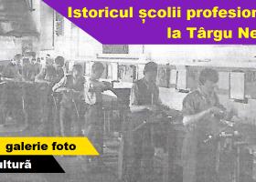 Istoricul şcolii profesionale la Târgu Neamţ