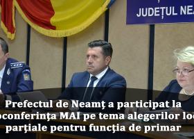 Județul Neamț, în grafic cu pregătirea alegerilor locale parțiale