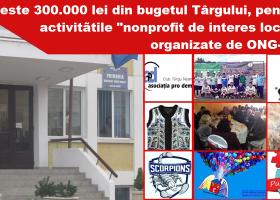Târgu Neamț: Peste 300.000 lei din bugetul local, pentru activitățile ONG-urilor