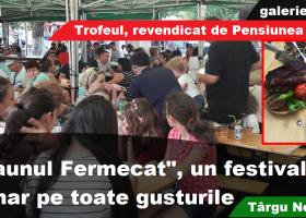 """Festivalul """"Ceaunul Fermecat"""", mostră de tradiţie culinară locală"""