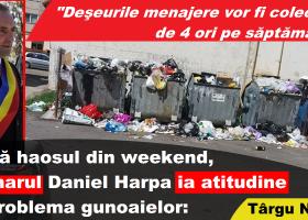 După haosul din weekend, primarul Harpa ia atitudine în problema gunoaielor