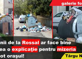 Domnii de la Rossal ar face bine să dea o explicație pentru mizeria din tot orașul
